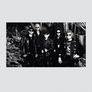 Scorpions Banner
