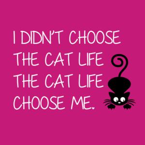 Cat Life Choose Me