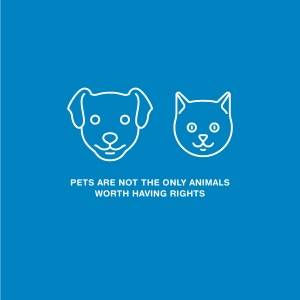 Pets are not only animals