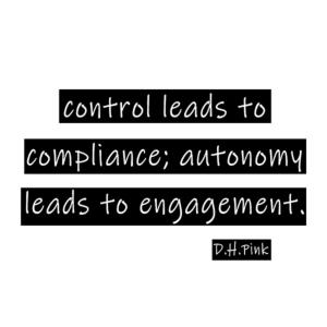 Autonomy D.H. Pink