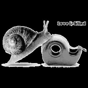 Snail in Love