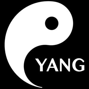 Yang Looking For Yin